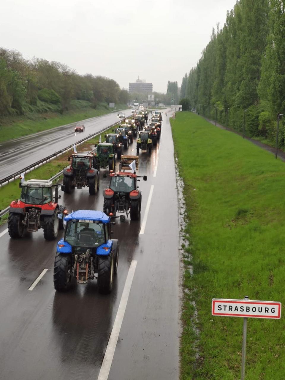 manifestation-strasbourg